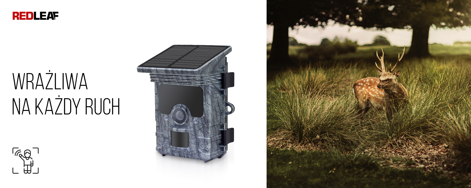 Kamera obserwacyjna z panelem słonecznym Redleaf RD7000 WiFi oraz rogacz ukrywający się w trawie na tle drzew